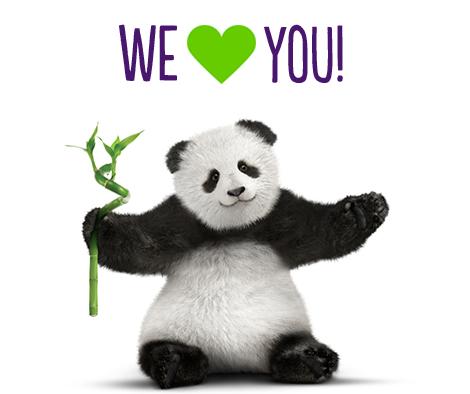 Panda-Love.jpg