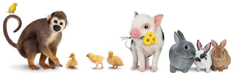 9-animal-family_sh_meps_9842890794_o.jpg