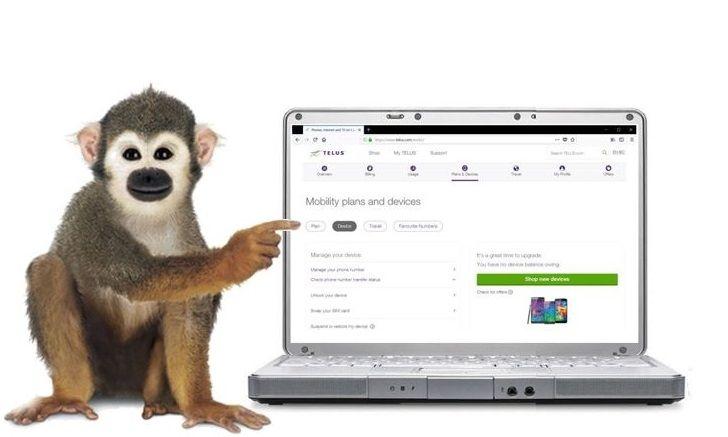 monkey_simswap.JPG