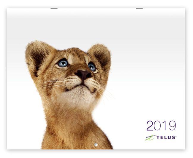 2019 Calendar image with Cub.jpg
