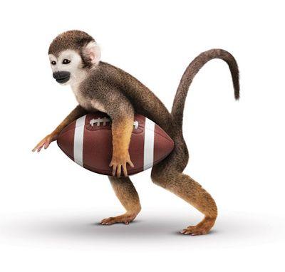NFL 1.jpg